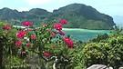 Thailand 2012 - Phi Phi Islands